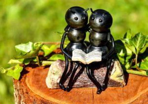ants-reading
