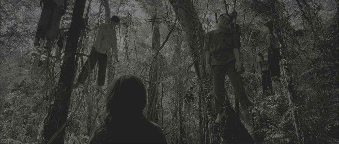 """Мрачный лес из тайского фильма ужасов """"Ре-цикл"""" 2006 года"""