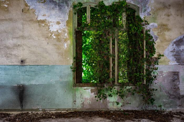 Италия, остров Повелья, психиатрическая клиника, самые страшные места на Земле